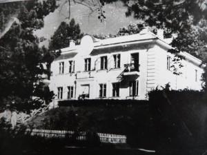 shmakovsky-history-2